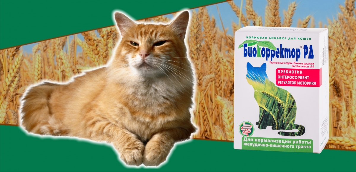 Биокорректор РД для кошек