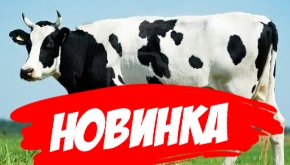 Молочко тонизирующе-восстанавливающее
